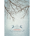 Winter Tree Branches vector image