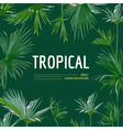Tropical Palm Leaves Background Graphic T-shirt vector image vector image