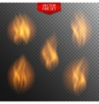 Naturalistic Fire on Dark Transparent Background vector image