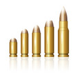 set of different bullets vector image