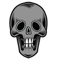 Skull-Tattoo vector image
