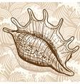 Sea shell vector image vector image