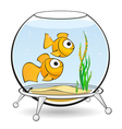 couple goldfish in an aquarium with caviar vector image