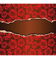 Torn paper with red roses vector image vector image