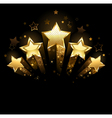 five gold stars vector image vector image