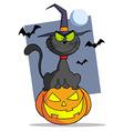 Cartoon Halloween Cat On Pumpkin vector image