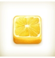 Lemon app icon vector image
