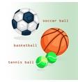 Sports balls Football basketball tennis vector image