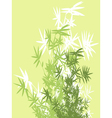 bamboo branches background vector image vector image