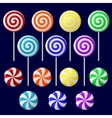 delicious lollipop collection vector image