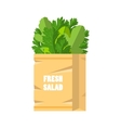 Fresh green salad in paper bag vector image