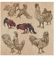 poultry - an hand drawn pack freehand sketching vector image