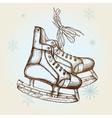 Drawing of skates vector image