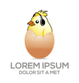 baby emblem with cute chicken and egg vector image