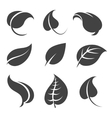 Grey leaves silhouettes on white background vector image