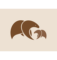 images of two brown bears vector image
