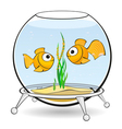 couple goldfish in an aquarium vector image
