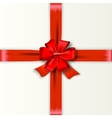 Red Ribbon with Satin Bow vector image vector image