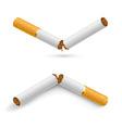 Broken cigarettes vector image vector image