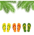 palm and flip flops template vector image