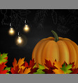 chalkboard with autumn leaves and pumpkin vector image