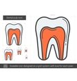 Dental pulp line icon vector image