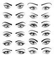 set open beautiful female eyes isolated on white vector image