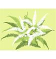 grass leaf background vector image