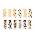 granola bars chocolate caramel with grain berries vector image