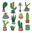 hand drawn doodle cactus set vector image