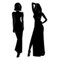 silhouette of beautiful women in evening dress vec vector image