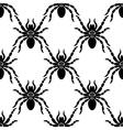 Spider web pattern vector image