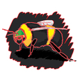 bumblebee-pw vector image