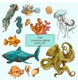 Sea creatures sketch colored vector image