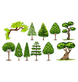 Different kinds of trees vector image