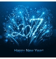 New Year 2017 fireworks vector image