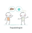 hepatologist says with a patient on the liver and vector image vector image