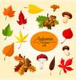 autumn season icon set with leaf and mushroom vector image