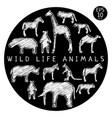 fauna doodle set vector image