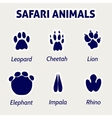 Safari animals footprint stickers vector image