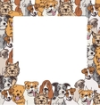 Group color dogs empty frame border vector image