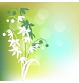 green background with spring flowers vector image vector image