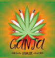 legalize cannabis banner vector image