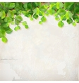 Tree branch leaves plaster wall background vector image
