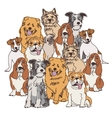 Group dogs color isolate on white vector image vector image