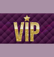 vip golden letters with glitter on abstract vector image