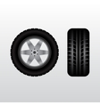 Car tire with wheel vector image