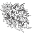 hand drawn flower Rhododendron bouquet vector image