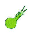 onion sign salad ingredient healthy vegetable vector image