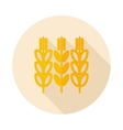 Spikelets of wheat flat icon with long shadow vector image
